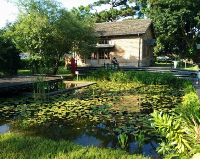 Pine Garden pond