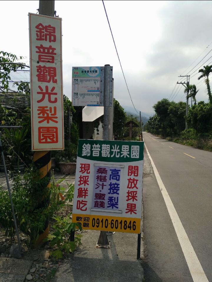 Jinpu Orchard Fruit Farm, Yilan