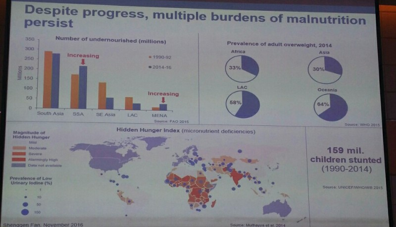 Global malnutrition statistics
