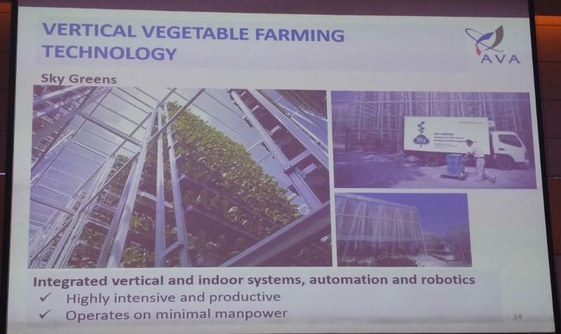 Sky Greens-Vertical Vegetable Farming Technology