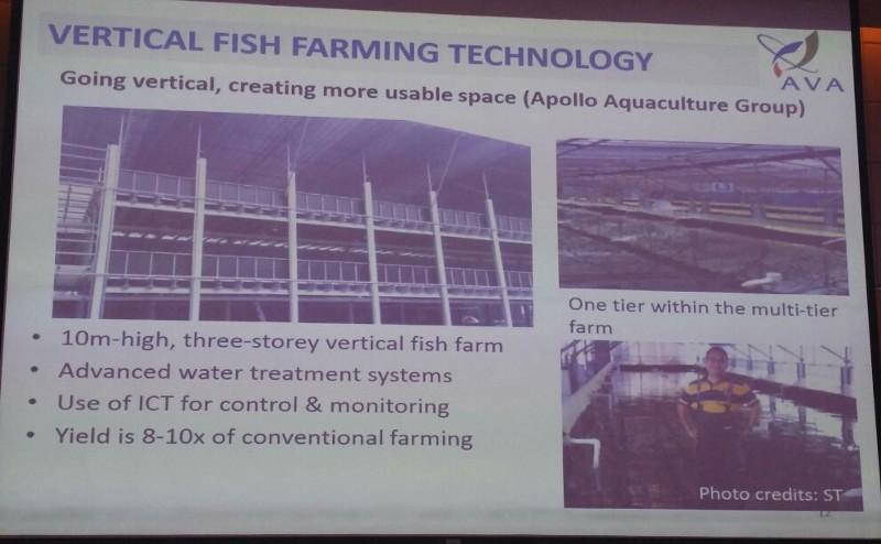 Vertical fish farming singapore Productivity