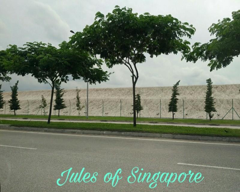 Seletar sand dune
